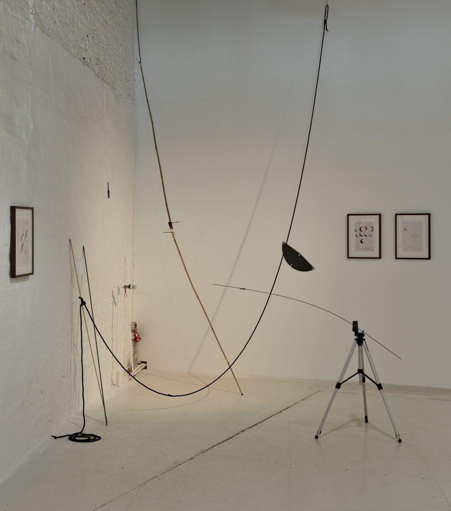 Cenit Mario Asef exhibition at wildpalms düsseldorf