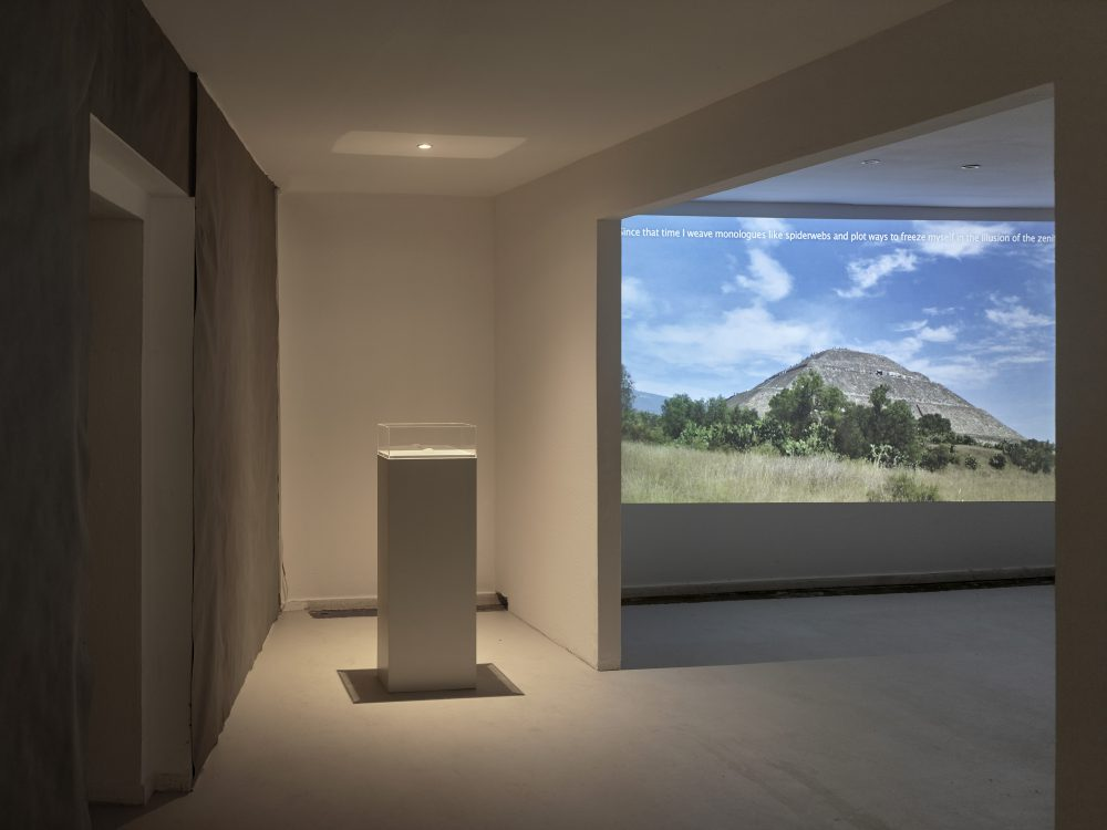 video cenit installation view at wildpalms duesseldorf