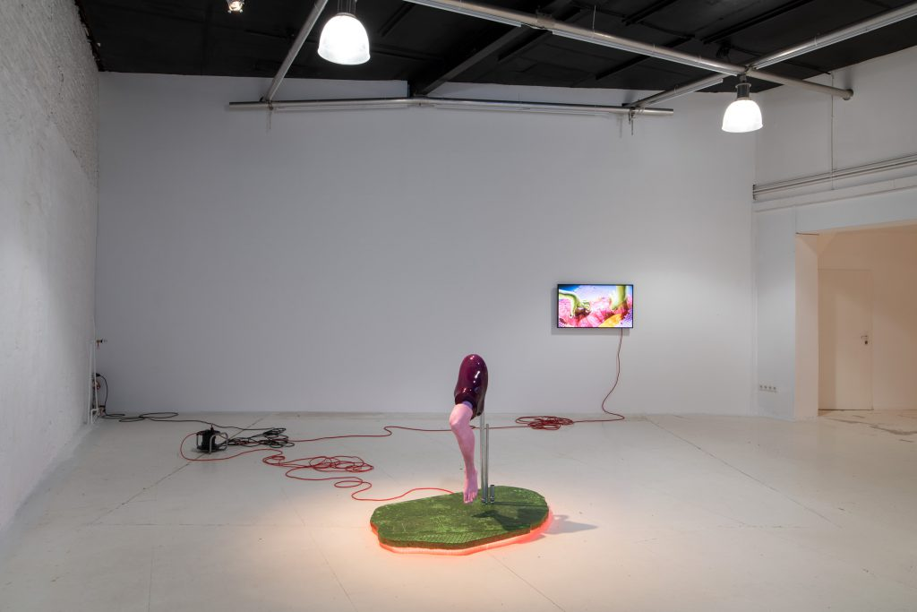 View of video and installation by Malte Bruns at wildpalms Düsseldorf