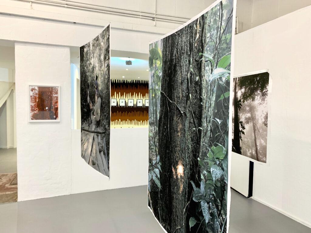 Works by Felipe Castelblanco for wildpalms