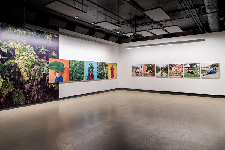 Karen Paulina Biswell @ wildpalms Momenta biennale Canada