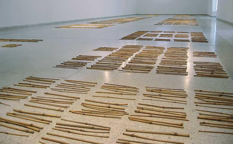 Beatriz Eugenia Díaz. 77 x 14, 2006. Art Museum of Universidad Nacional de Colombia.