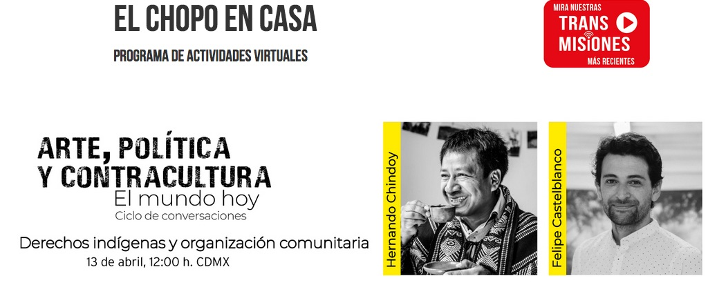 Felipe Castelblanco &Hernando Chindoy Museo del Chopo wildpalms