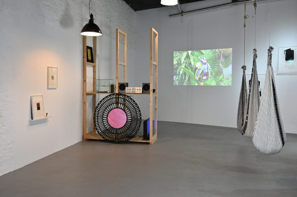 Paul Hance exhibition magical operations wildpalms duesseldorf
