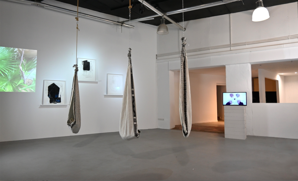 installation view wildpalms magicala operations exhibition